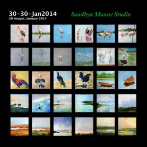 Jan 2014 30-30 at a glance