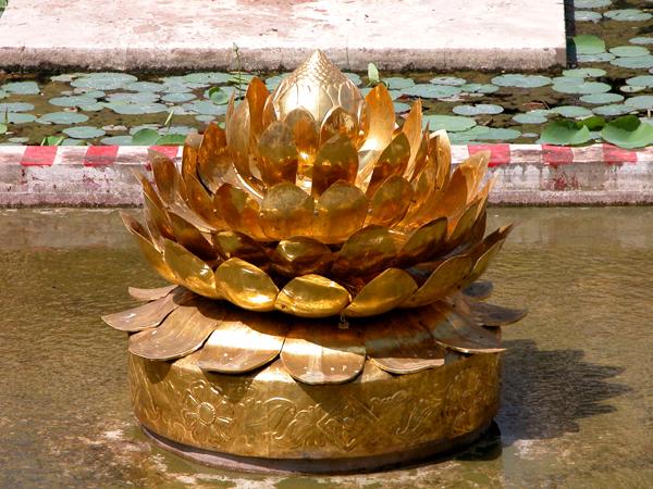 Golden Lotus...