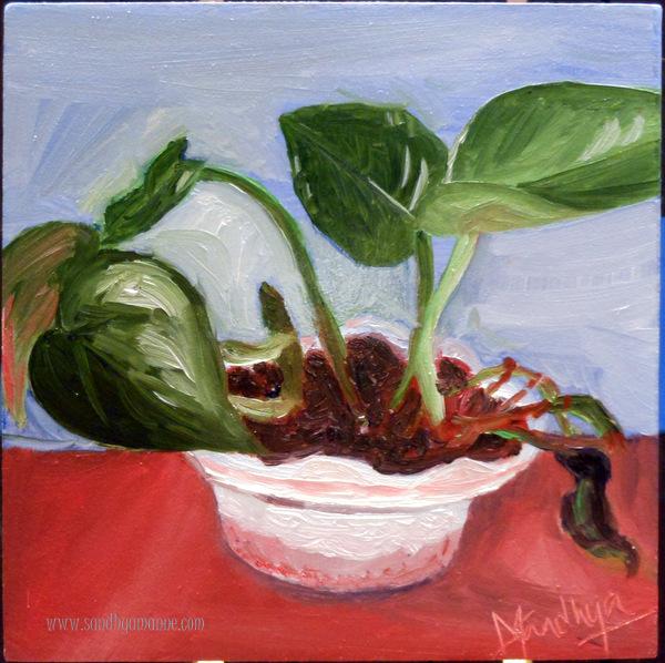 """Money Plant"" 4""x4"" Oils on Canvas ©sandhyamanne"